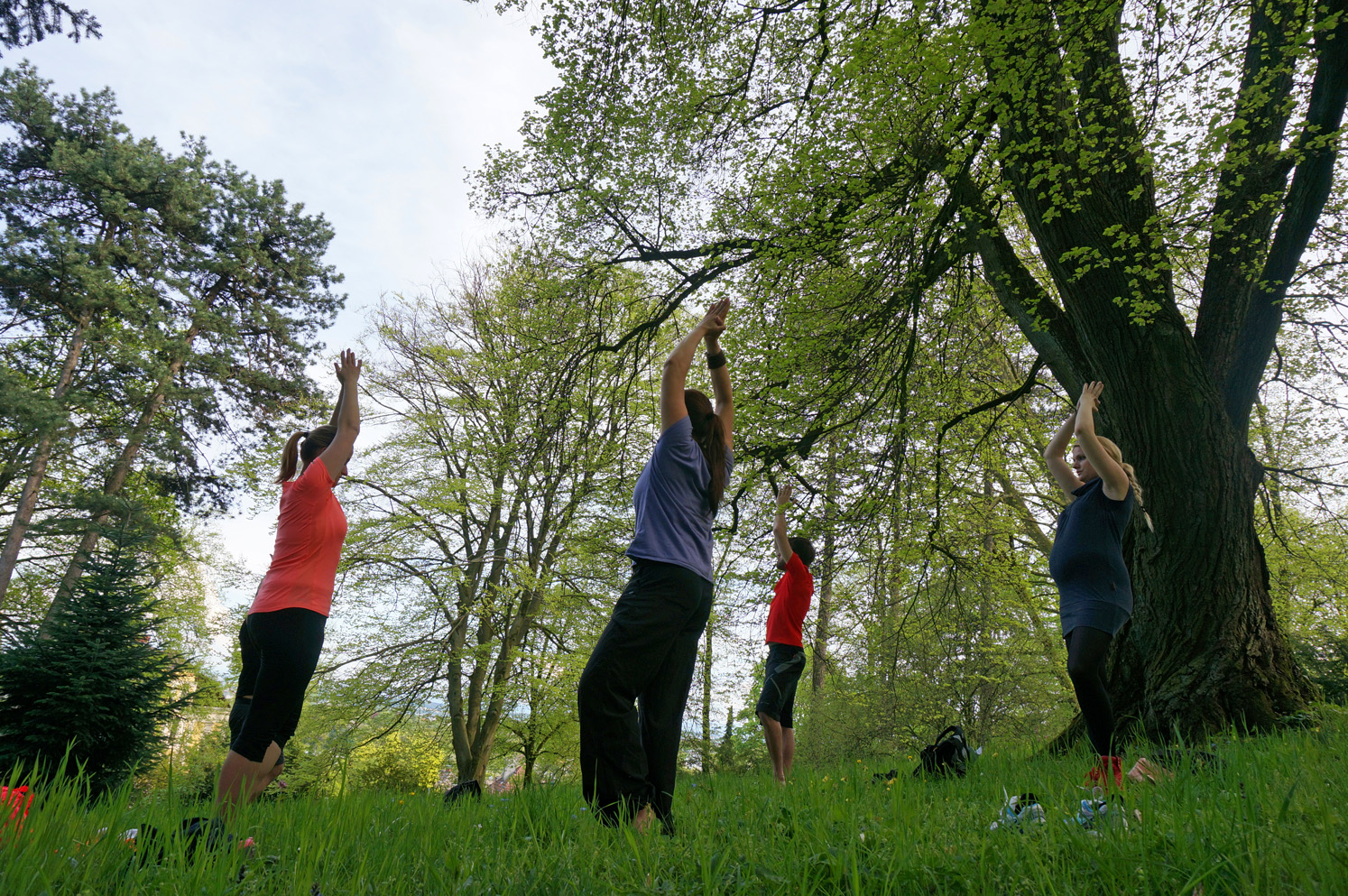 Yoga Refresh Gruppen-Einheiten